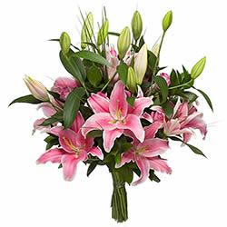 livraison de fleurs fleuriste envoyer des fleurs en suisse. Black Bedroom Furniture Sets. Home Design Ideas