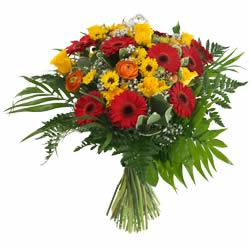 livraison de fleurs la chaux de fonds fleuriste la chaux de fonds 2300. Black Bedroom Furniture Sets. Home Design Ideas